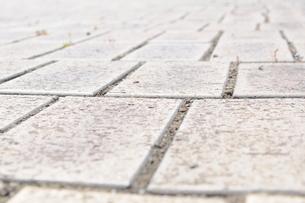 道/レンガ/公園/散歩/遊歩道/石畳の写真素材 [FYI00378545]