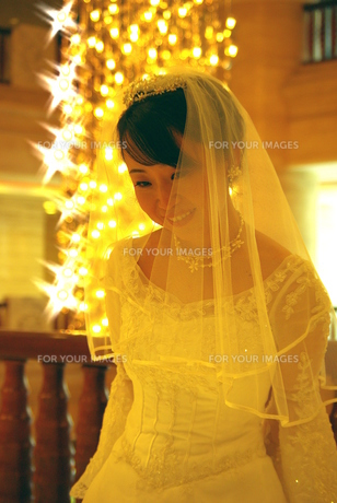 美しい花嫁の写真素材 [FYI00378620]