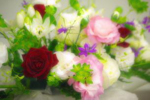 淡い花束の写真素材 [FYI00378649]