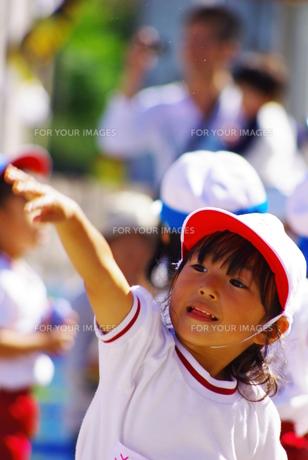 玉入れをする女の子の写真素材 [FYI00378674]