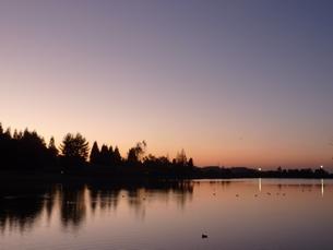 水面に映る林の写真素材 [FYI00378807]
