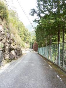 十津川村 山道の写真素材 [FYI00378832]