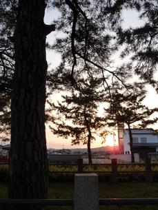 木陰から夕日を眺めるの写真素材 [FYI00378851]