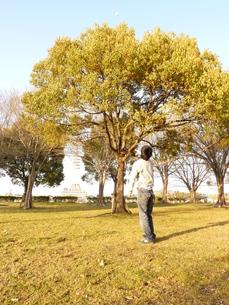 空を見上げる男性の写真素材 [FYI00378861]