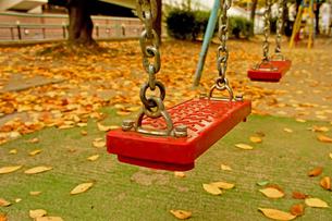 秋のブランコの写真素材 [FYI00378901]