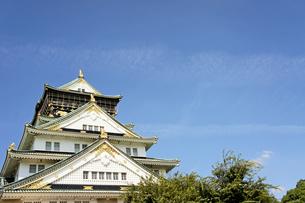 晴天の大阪城の写真素材 [FYI00378902]