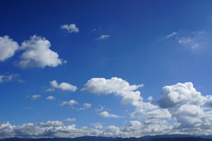 秋の青空の写真素材 [FYI00378916]