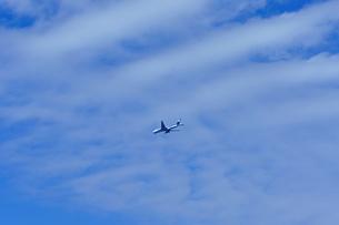 秋空のジャンボ機の写真素材 [FYI00378917]