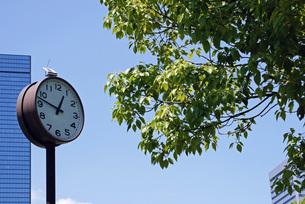 公園の時計の写真素材 [FYI00379021]