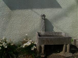 庭の水道の写真素材 [FYI00379080]