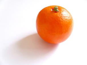 オレンジの写真素材 [FYI00379090]