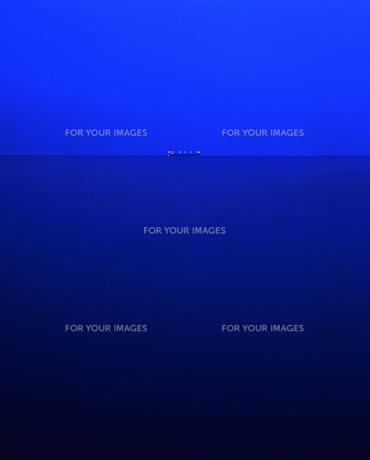 未明の海の写真素材 [FYI00379287]
