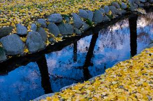 水辺の秋の素材 [FYI00379288]