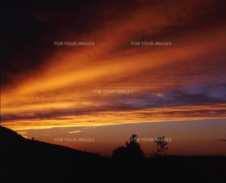 夕景の写真素材 [FYI00379326]