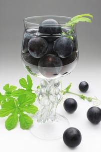葡萄 ぶどう ブドウ(種なし巨峰)の写真素材 [FYI00379353]