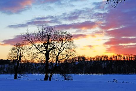 北海道 網走湖 雪景色の素材 [FYI00379371]