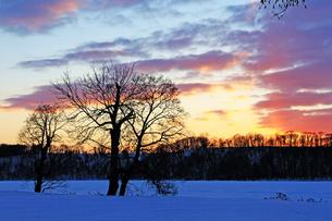 北海道 網走湖 雪景色の写真素材 [FYI00379371]