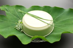豆腐 おぼろ豆腐 和食 日本料理の写真素材 [FYI00379391]