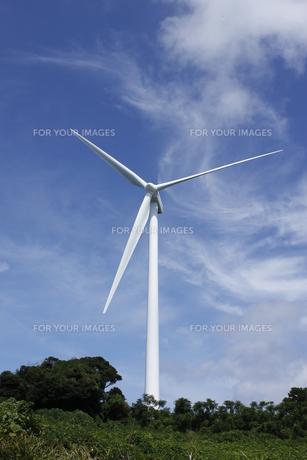 風車の写真素材 [FYI00379423]