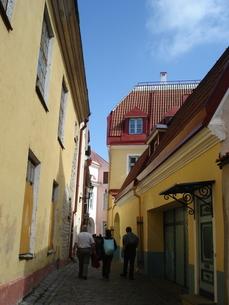 エストニア・タリンの街角の写真素材 [FYI00379488]
