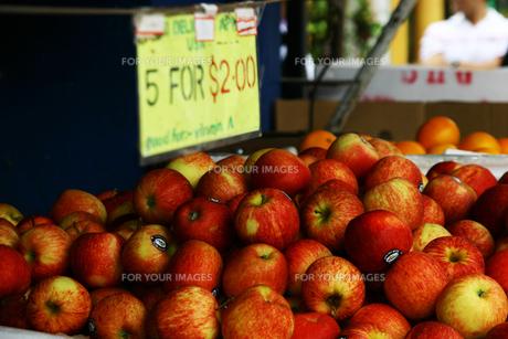 りんごの写真素材 [FYI00379608]