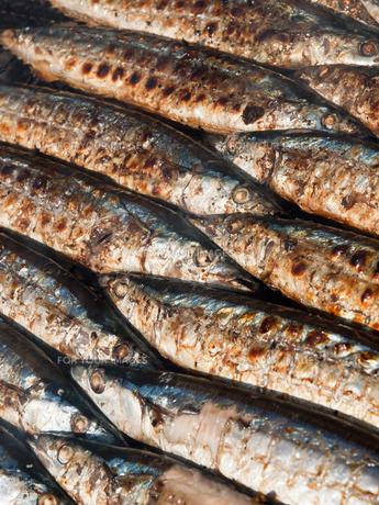 秋刀魚の写真素材 [FYI00381086]