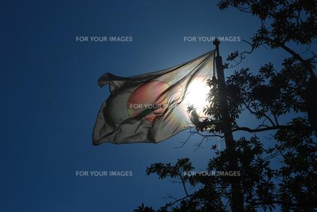 国旗の写真素材 [FYI00381106]