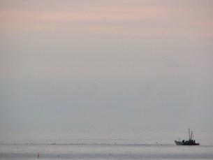 サケ漁の風景の素材 [FYI00381154]