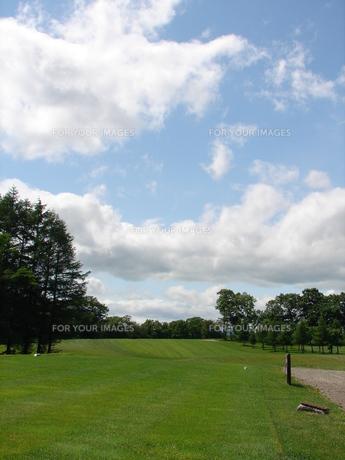ゴルフ場の写真素材 [FYI00381199]