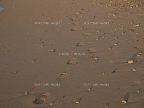 足跡の写真素材 [FYI00381215]