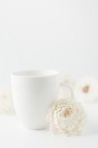 白背景に白色のコップと造花の写真素材 [FYI00381434]