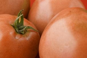 トマトのアップの写真素材 [FYI00381518]