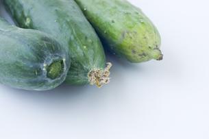 胡瓜のアップの写真素材 [FYI00381532]