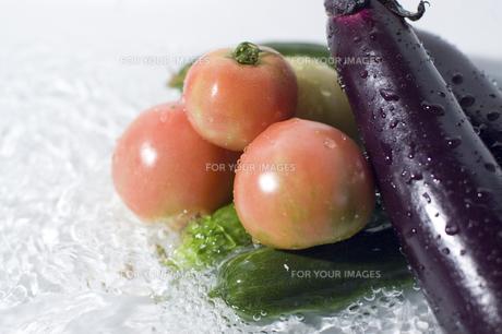 水に浸けられた野菜の素材 [FYI00381535]