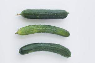 白背景に3本の胡瓜の写真素材 [FYI00381536]