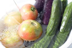 水に浸けられた野菜の写真素材 [FYI00381552]