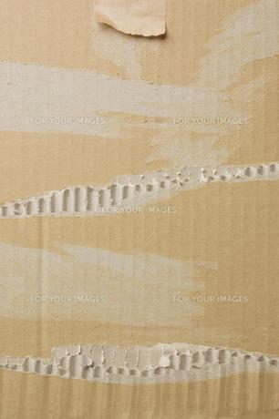 ボロボロの段ボールの写真素材 [FYI00381557]