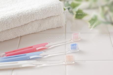 歯ブラシとタオルの写真素材 [FYI00381720]