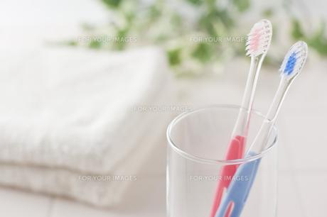 歯ブラシとタオルとコップ の写真素材 [FYI00381721]