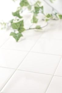 タイルの床と蔦の写真素材 [FYI00381732]