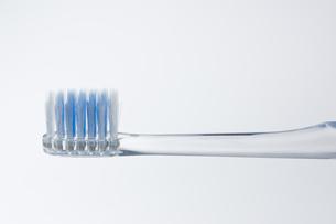 歯ブラシのアップの写真素材 [FYI00381733]
