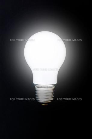 黒背景に白熱電球の素材 [FYI00381749]