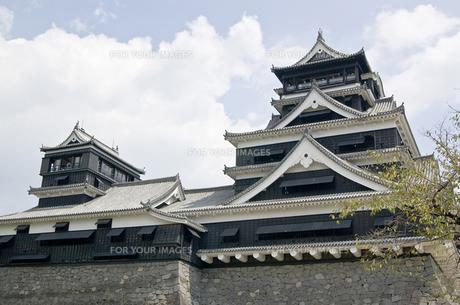 熊本城の写真素材 [FYI00381922]