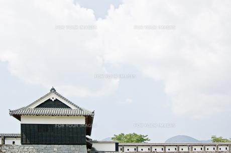 熊本城の写真素材 [FYI00381926]