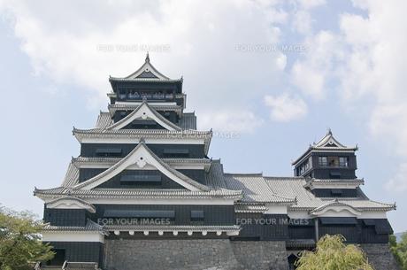 熊本城の写真素材 [FYI00381927]