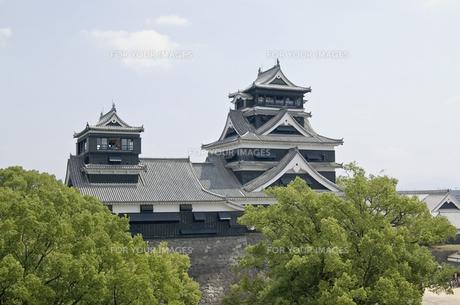熊本城の写真素材 [FYI00381929]