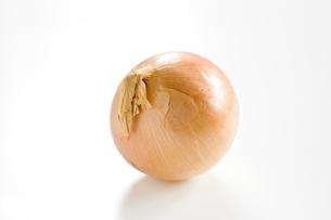 白色の背景に1個の玉葱の写真素材 [FYI00381951]