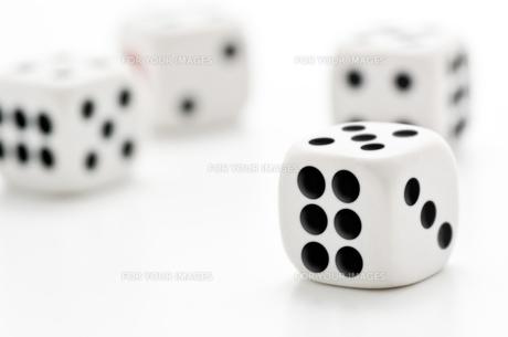 白背景に複数のサイコロの写真素材 [FYI00382032]