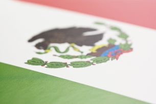 メキシコの国旗のアップの写真素材 [FYI00382101]