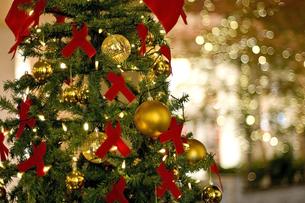 クリスマスツリーとイルミネーションの写真素材 [FYI00382132]